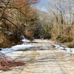 """Path"" Gabriele - 2011"