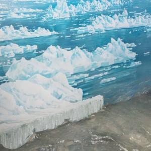 Mar Glaciale Artico Wrangell National Park, Alaska, 2015